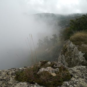 Poggio Miratoio, storie di rocce